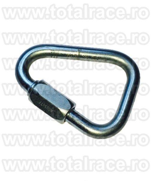 Carabina Steel Triangular Screw Gate RGK12